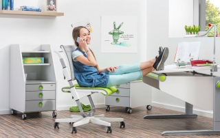Детски мебели moll за обзавеждане на тийнейджърската стая